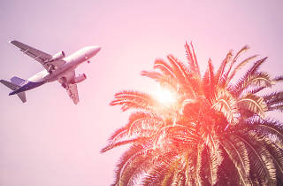 Airplane travel guide in Miami