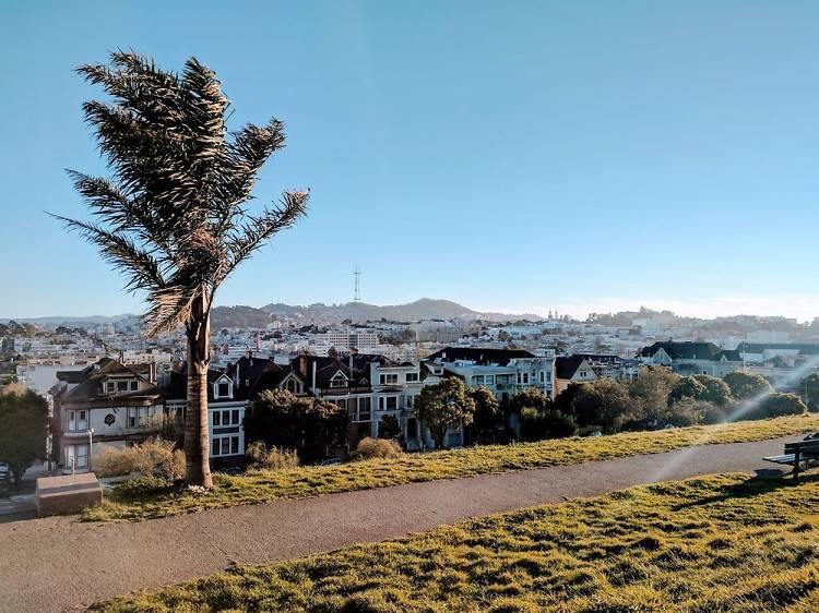 The 12 best San Francisco parks