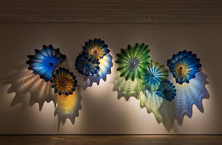 Whitestone Gallery Dale Chihuly