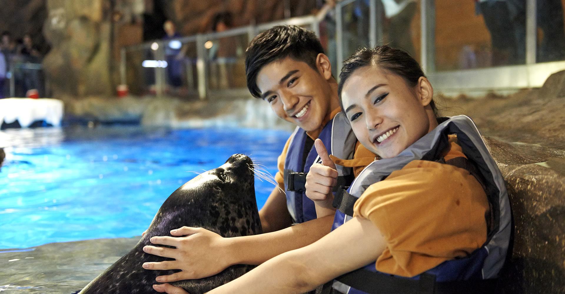 Ocean Park's Seal Encounter
