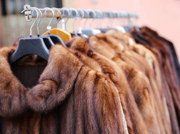 San Francisco has officially banned the sale of fur