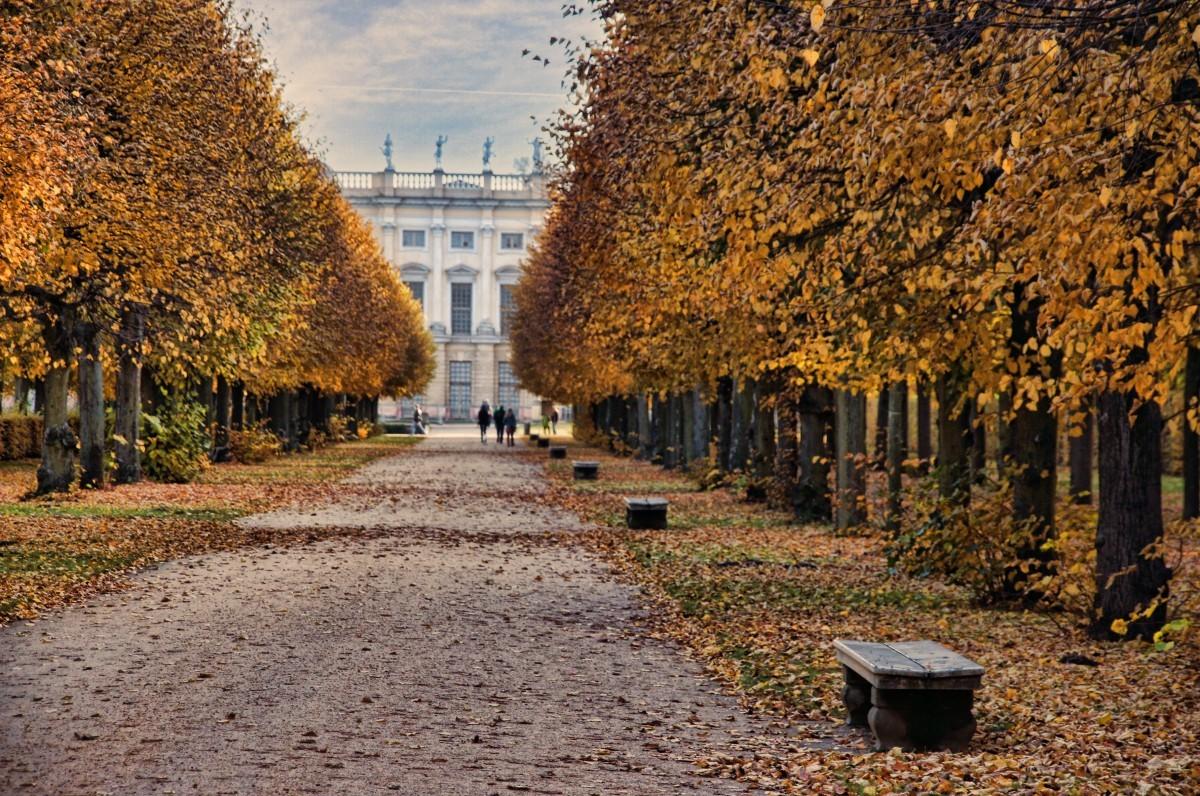 Fall in Düsseldorf