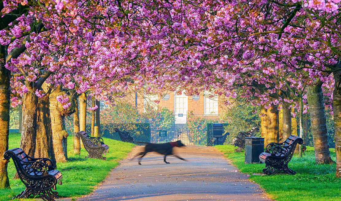 35 superb things to do in London this weekend
