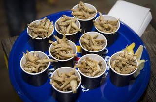 Slow Fish Festival