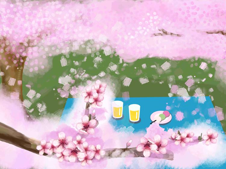 Hanami: how to enjoy cherry blossoms like a local