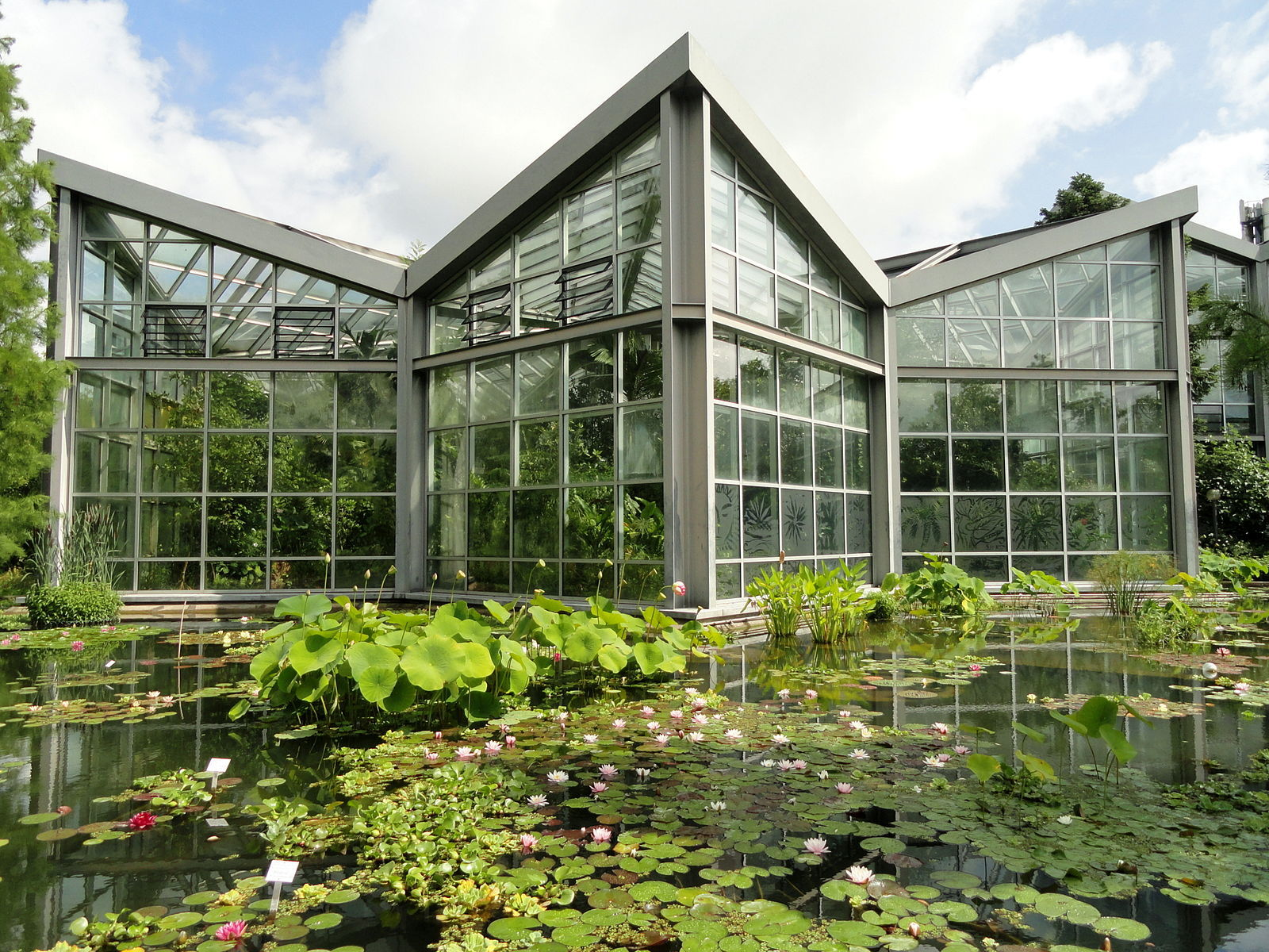 The Tropicarium Greenhouse at PalmenGarten