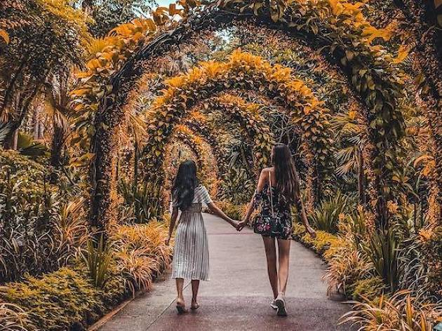 The most Instagrammable parks in Singapore