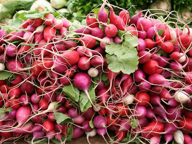 Radishes, spring onions and horseradish