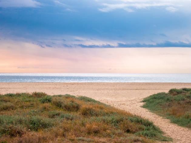 Platges de Viladecans
