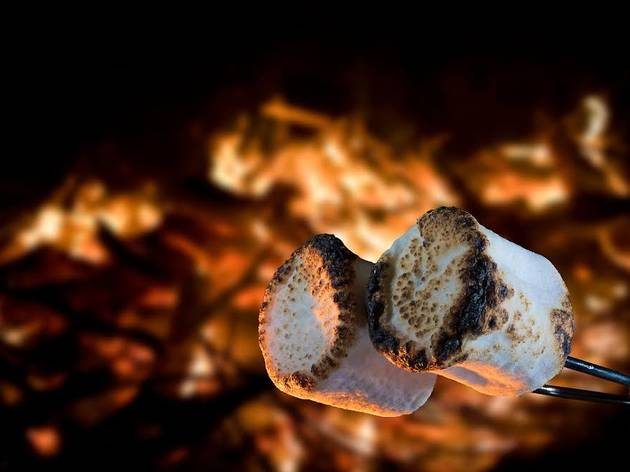 Two marshmallows being roasted over a campfire to make smores ; Shutterstock ID 1052652974; Purchase Order: Kids Digital; Job: ; Client/Licensee: Time Out; Other: