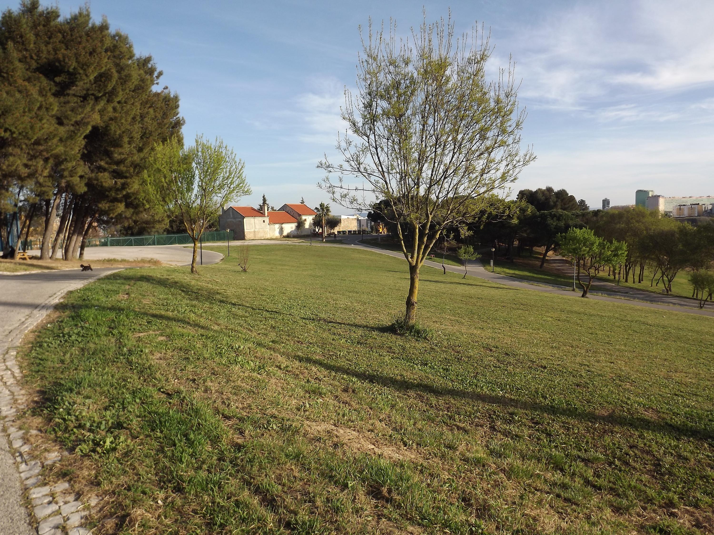 Parque da Bela Vista