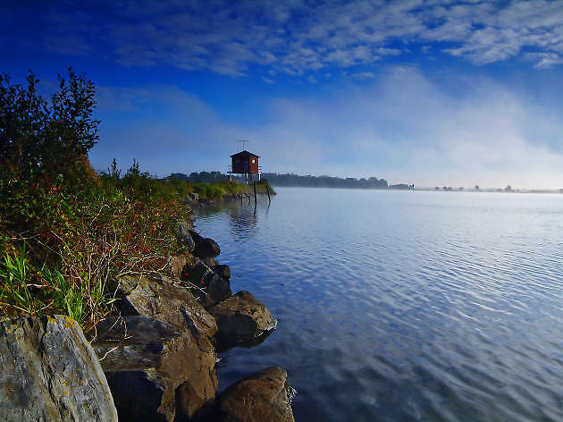 Oxford island, Lough Neagh, Northern Ireland