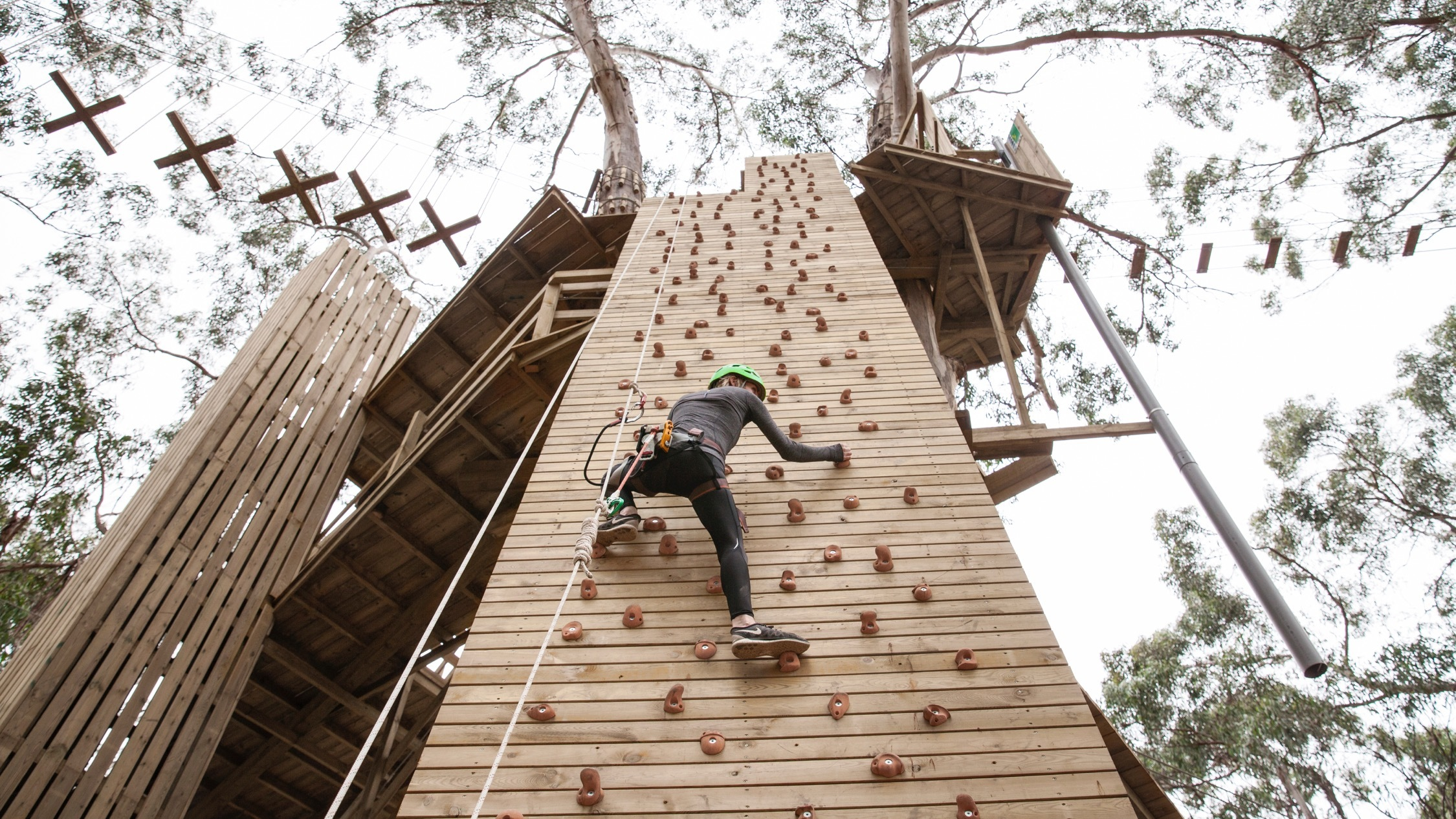 People on high ropes course at Live Wire Melbourne