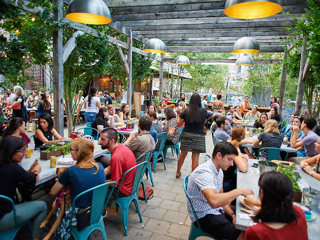 PHS Pop-Up Gardens offer the chance to drink in a lush urban oasis.