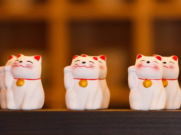 Lucky Cat - generic image from Dreamstime