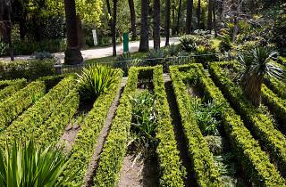 Jardim Azul - Oficina de Cianotipia