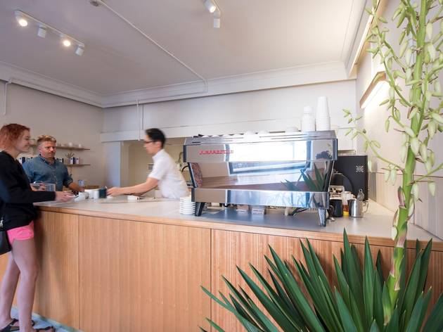 Counter at Primary Roasters
