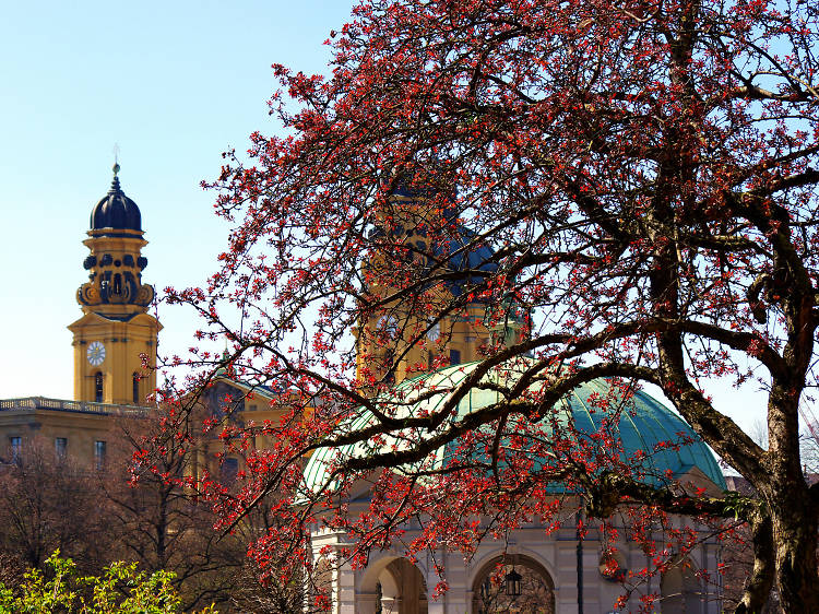 The 9 ultimate Munich attractions