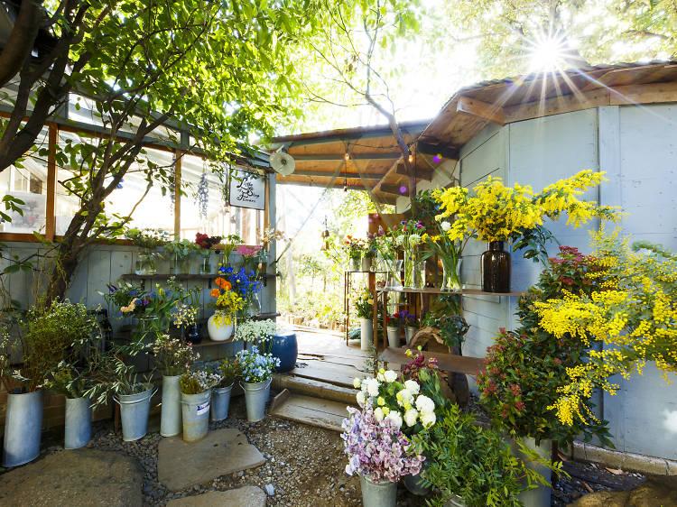 Pick out fresh florals