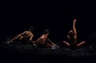 H2O, El encuentro con la Vida (Foto: Humberto Romero)