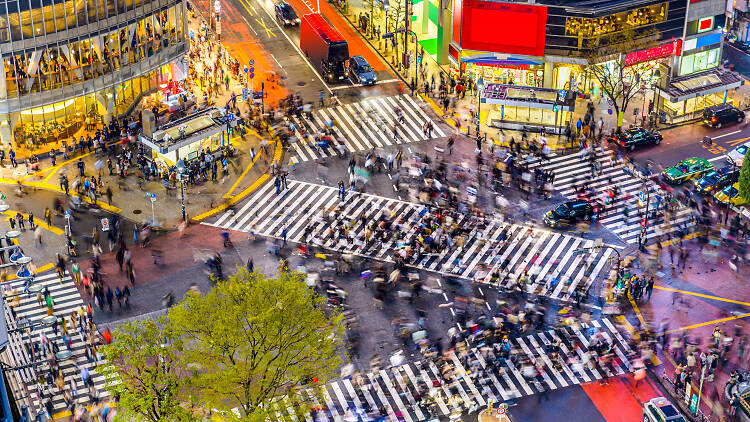 Tokyo Shibuya Crossing - Dreamstime