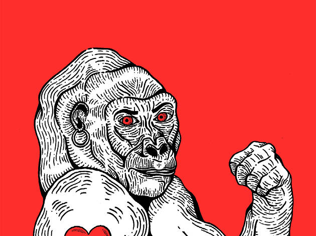 Teoria King Kong, Virginie Despentes