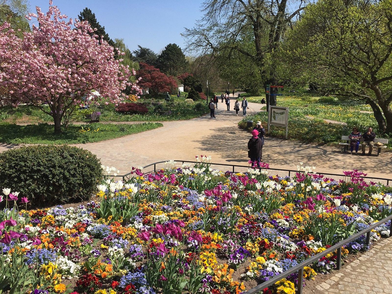 Frühling in Planten un Blomen