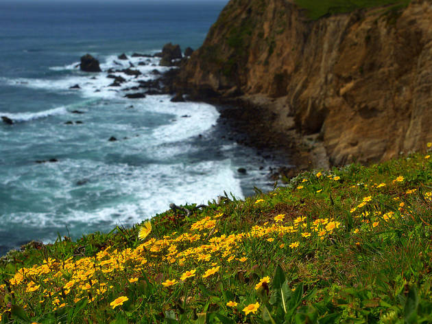 Get outdoors with the best hikes in the Bay Area