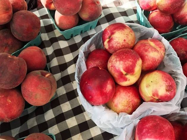 The Singing Fountain Farmers Market takes place on East Passyunk Avenue every Wednesday.