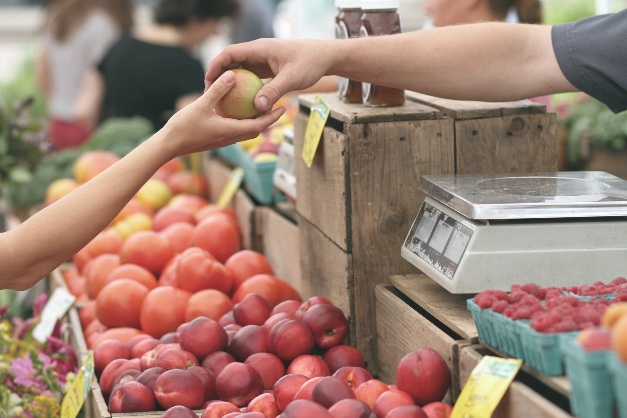 The Chestnut Hill Farmers Market is open on Saturdays.
