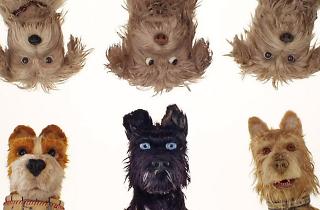 'Isla de perros' de Wes Anderson