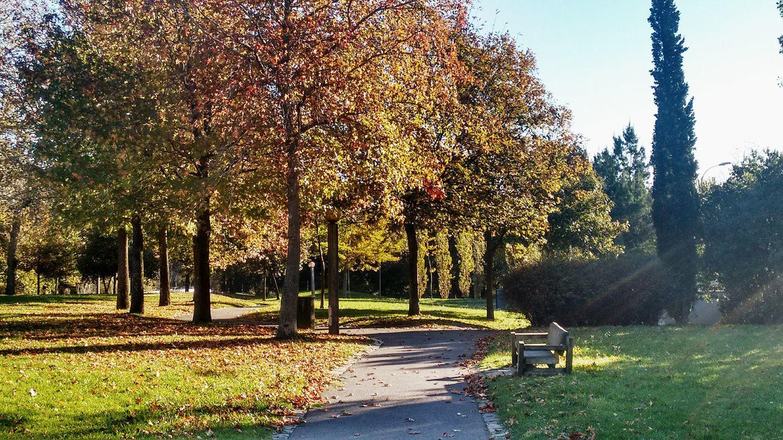 Parque da Pasteleira