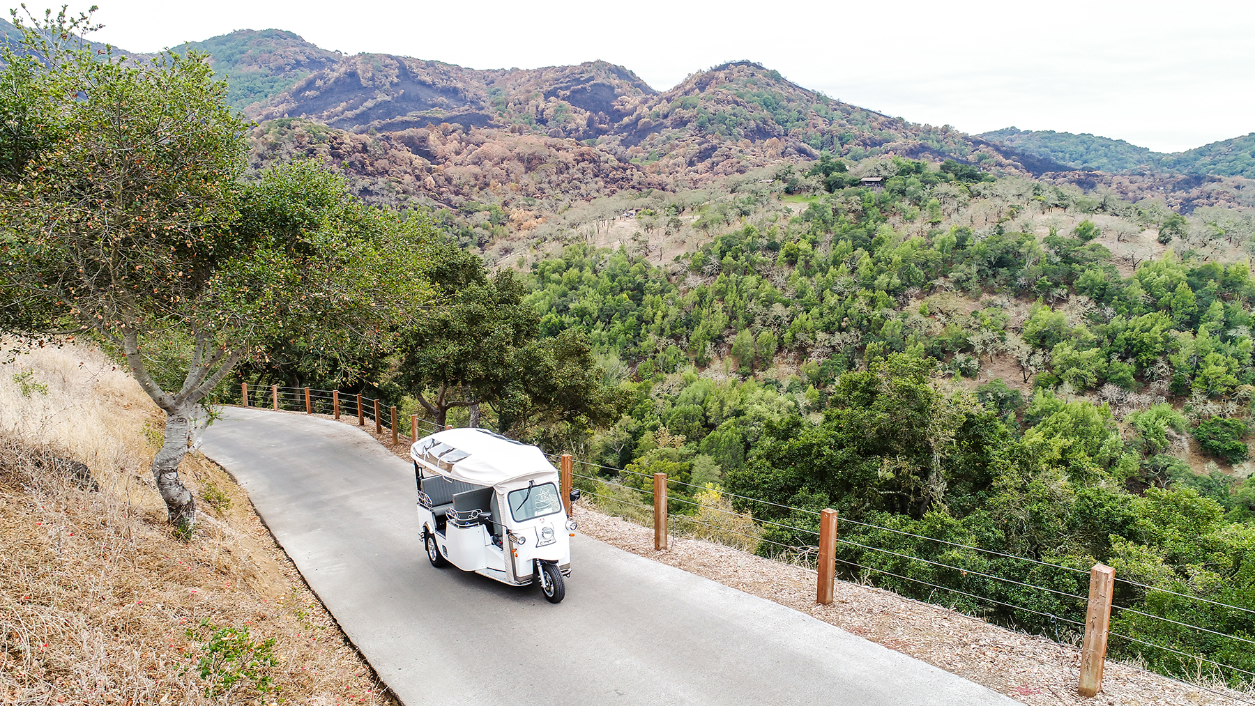 Tuk-tuk tour of Napa Valley via Laces and Limos