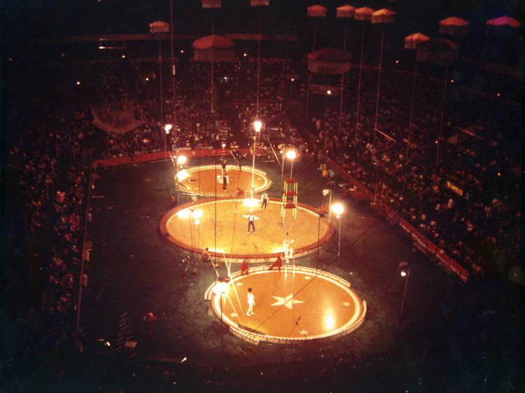 El circo en la Arena México