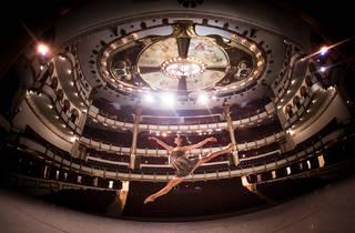 (Foto: Cortesía Teatro de la Ciudad Esperanza Iris)