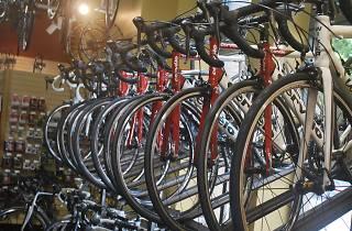 Generic Bike store