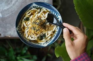Generic Noodles