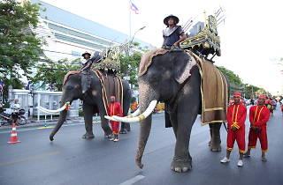 HBD Bangkok