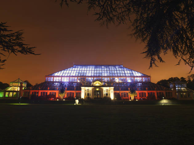 Exclusive preview: Temperate House at Kew Gardens