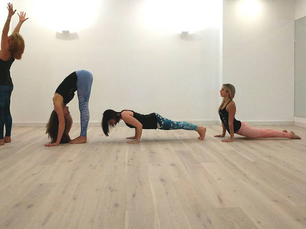 Four yoga participants are joined by a dog