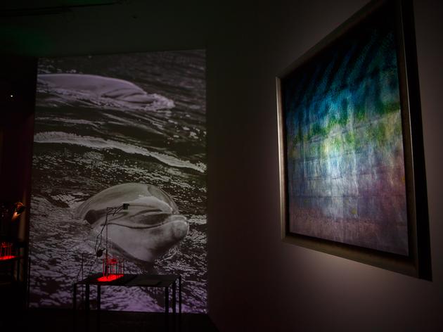 落合陽一の個展がEYE OF GYREで開催中。新作や近作など、15作品を展示