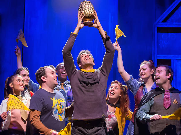 We talked to Puffs about the new Broadway show about a certain boy wizard