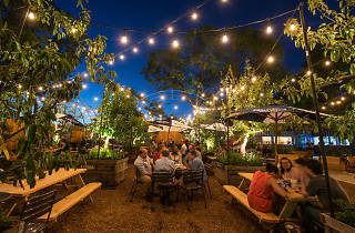 There are two gorgeous PHS Pop-Up Beer Gardens.