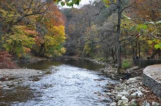 Forbidden Drive is an easy hiking trail in Wissahickon Valley Park