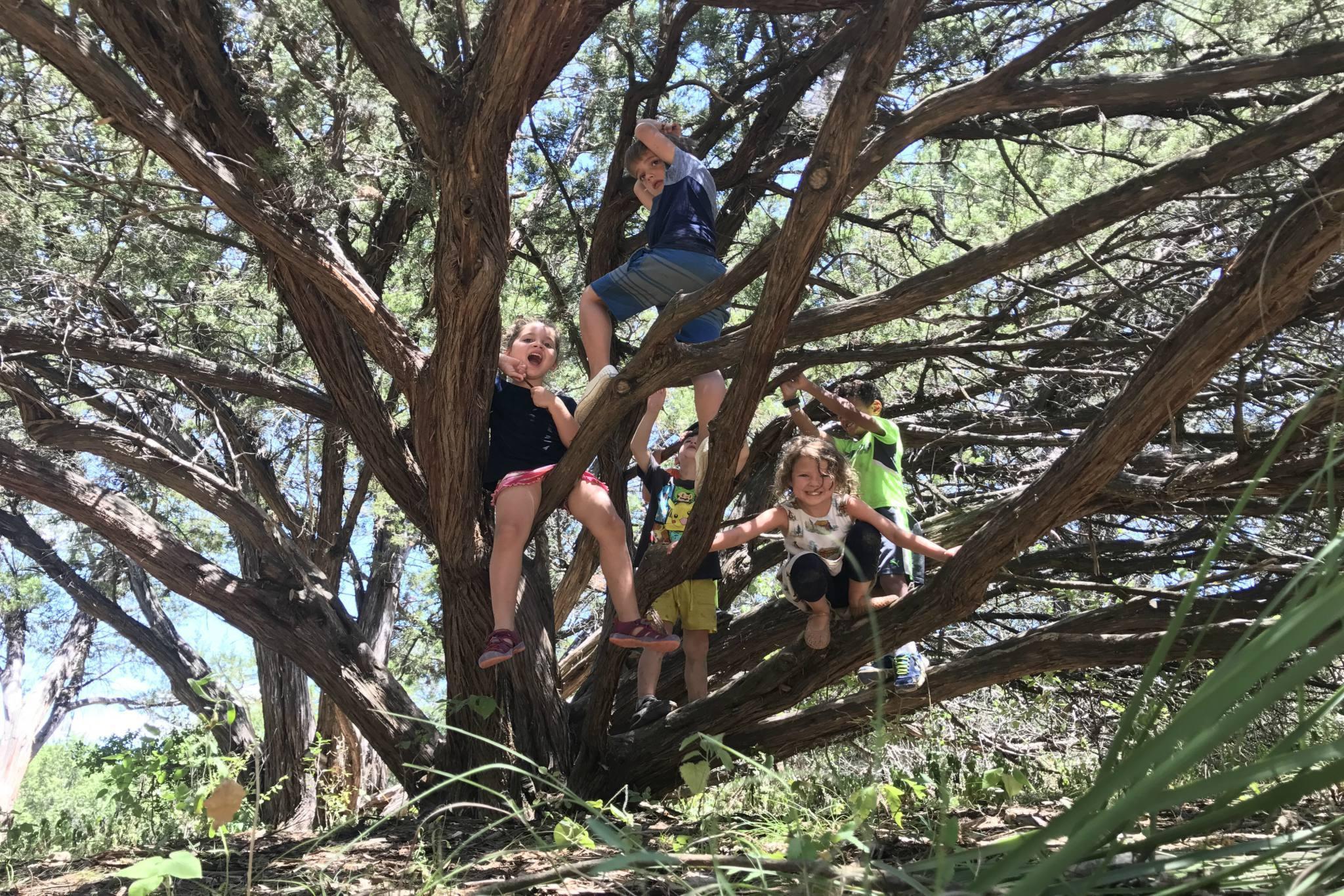 Earth Native School Camps