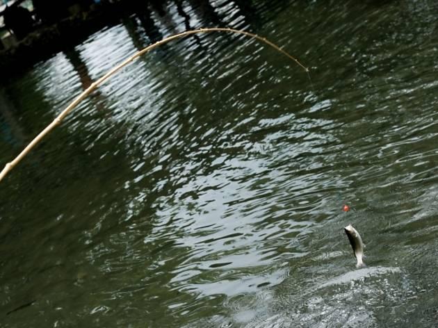 レトロな遊園地内の釣り堀