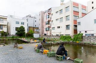 寿々木園(Photo:Keisuke Tanigawa)