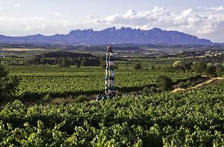 Castellers de Vilafranca a la Primavera de Vins 2018