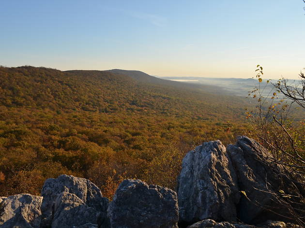 For great hiking near Philadelphia, check out the Lookout Trail on Hawk Mountain.