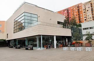Biblioteca El Carmel-Juan Marsé